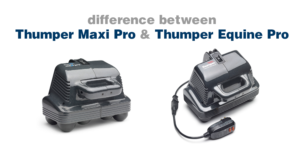 The Difference Between the Thumper Maxi Pro & the Thumper Equine Pro