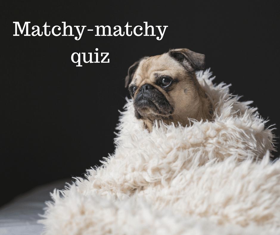 Matchy-matchy quiz