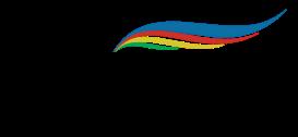 FICS logo transparent